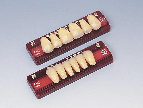 人工歯 製品の使用用途 セラミックス製人工歯 見学可能な博物館など 特になし セラミックス博物館